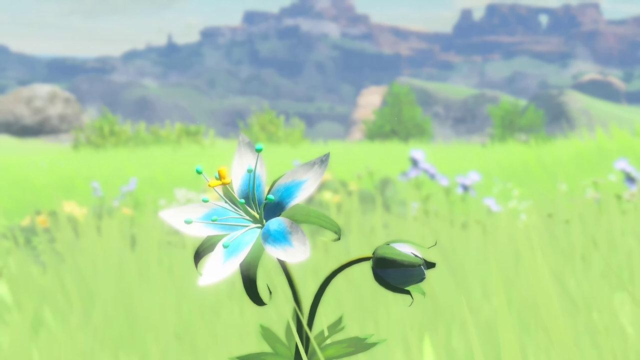 『ゼルダの伝説 ブレス オブ ザ ワイルド』が任天堂から発売される最後のWiiUソフトに、オンラインサービスやソフト販売は継続